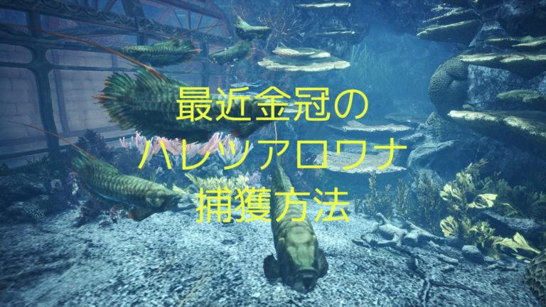タキシード サンゴ ドリ 金冠